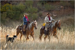 Caval&go aux USA - Hideout Ranch, Shell Wyoming