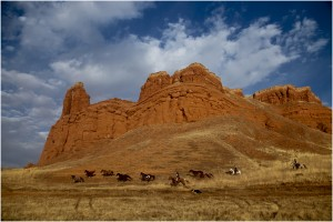 Caval&go USA Automne Shell Wyoming