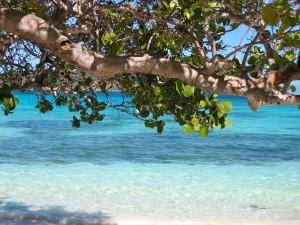 La Barbade Caraïbes