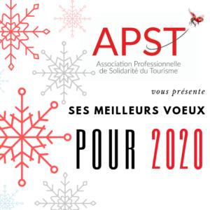 visuel flocons de neige rouge et gris meilleurs vœux de l'APST 2020